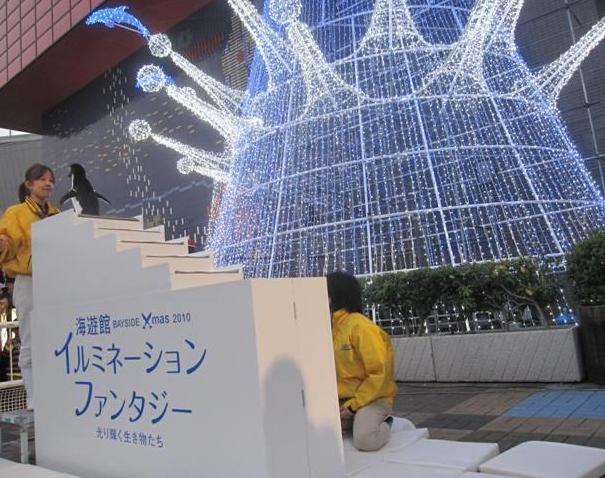 2010tentousiki_blog2.jpg
