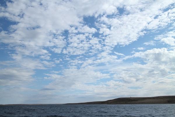 北極9_1.JPG