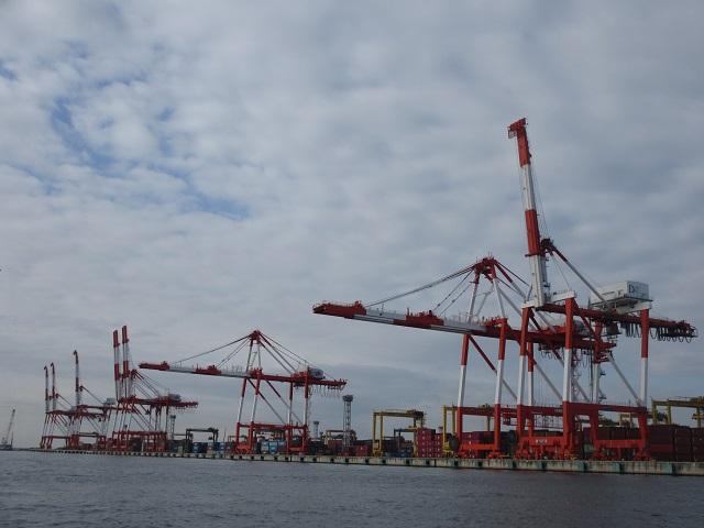 大阪湾の巨大生物1.jpg