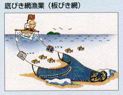 板びき網.jpg