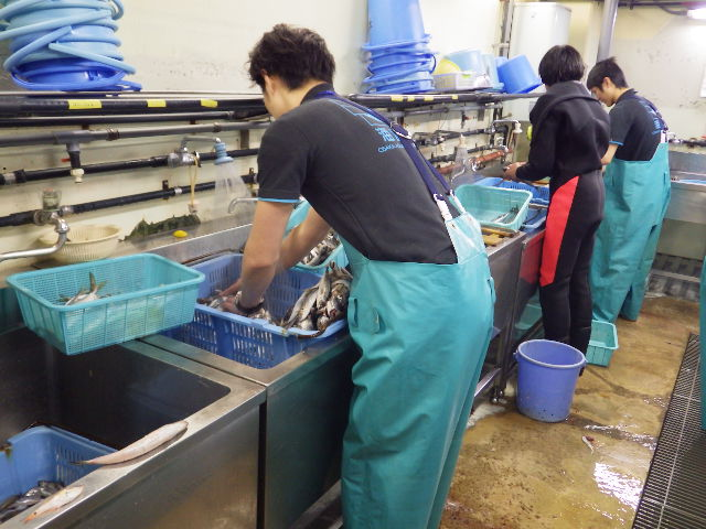 0306ishikawa1.JPG