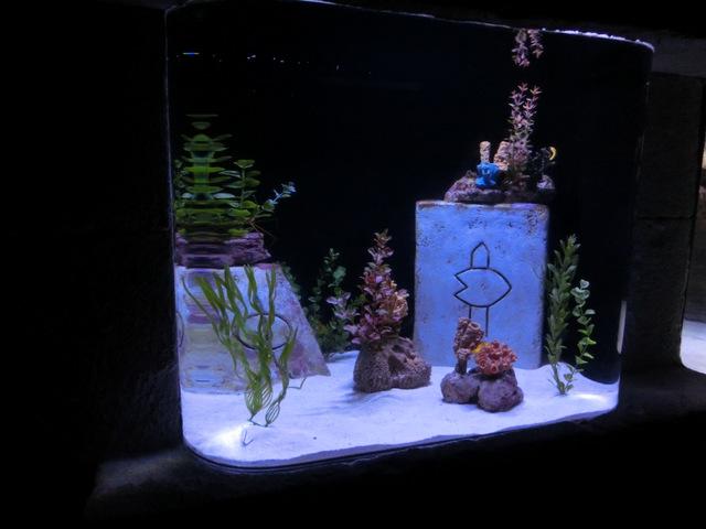 1-写真② 遺跡に魚.JPG
