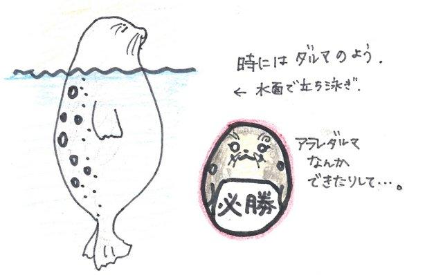1-140718あられぽーず4.jpg