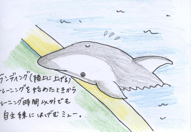 140116ishikawa1.jpg