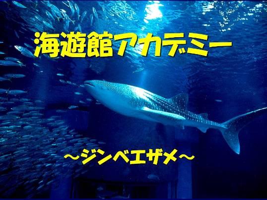20130531_1.jpg