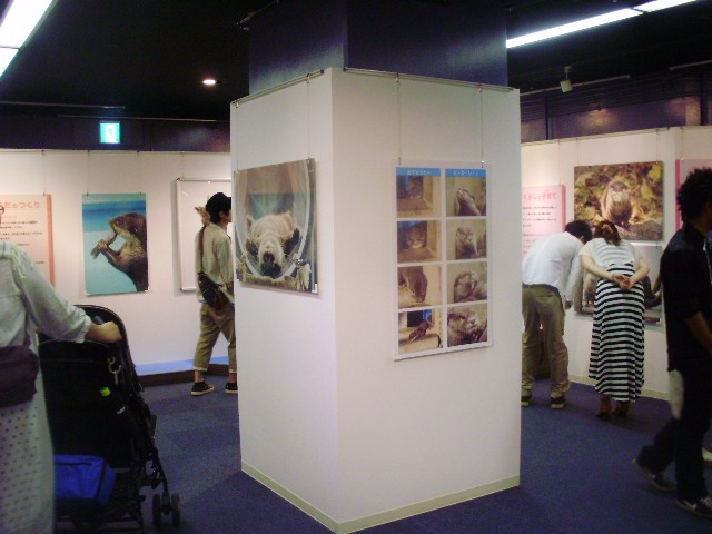 kawaomo写真3.JPG