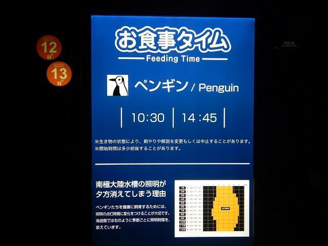 180125_makkura_nankyoku_2.JPG