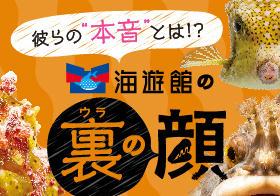 WEB_banner2.jpg