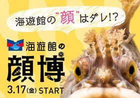 kaohaku_banner.jpg