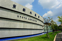 kyoto_001.jpg