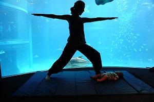m_b_yoga_3.jpg