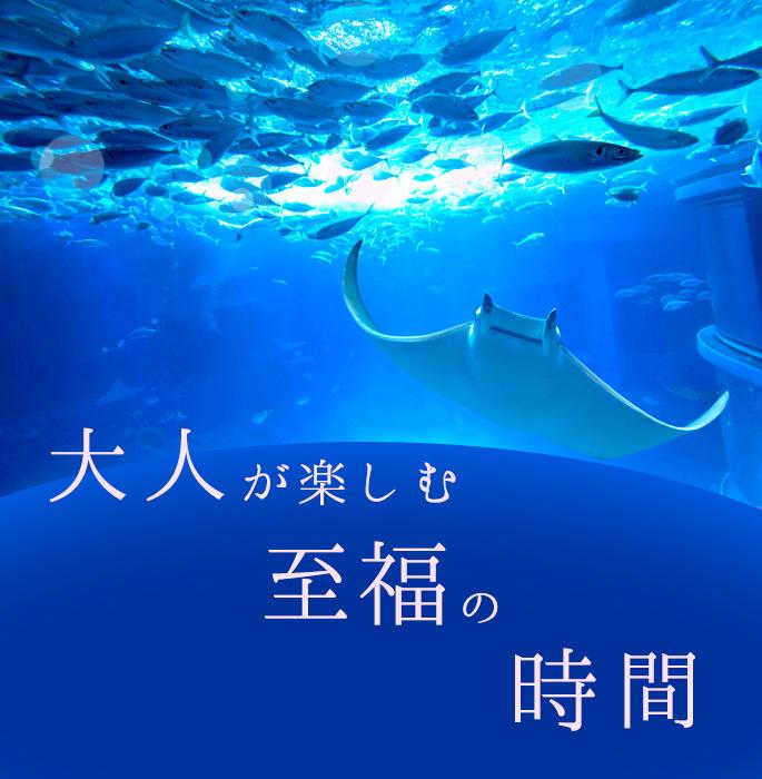 otona_main_2.jpg
