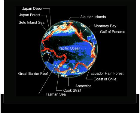 所謂海遊館地球和生存在地球上的所有生物,是彼此相互作用而形成的一個生命體。