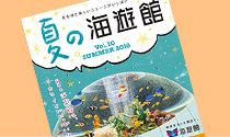 海遊館 おもしろ情報紙「夏の特別号」ができました!
