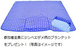blanket_image.jpg