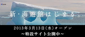 newkaiyukan_bnr.jpg