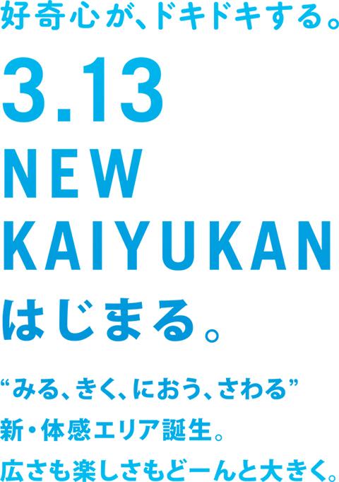 newkaiyukan_poster.jpg