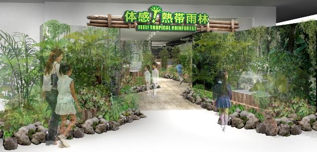 rainforest_pre_1.jpg