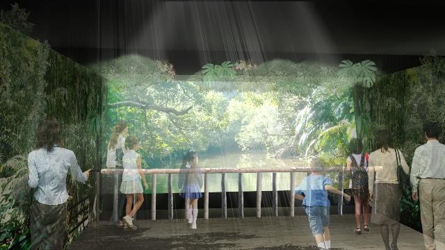 rainforest_pre_3l.jpg